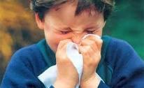 La secreción nasal constante es uno de los problemas más frecuentes de la niñez. Muchos lactantes tienen secreciones nasales y estornudan durante sus primeras 2 semanas de vida. Se desconoce la causa de ello, pero, sin duda, es un fenómeno natural. También los niños tienen secreciones nasales durante accesos de llanto y, en ocasiones, después de hacer ejercicio. En estos casos, las secreciones son transitorias y no deben ser motivo de alarma. El sello distintivo del catarro común es la abundante secreción nasal. La naturaleza la provoca con el fin de combatir la infección viral. Las secreciones nasales contienen anticuerpos que actúan contra el virus: La profusa salida de líquidos arrastra consigo los virus para eliminarlos del organismo. Otra causa de las secreciones nasales es la alergia. Se estima que los niños cuyas secreciones nasales se deben a una alergia tienen rinitis alérgica, mejor conocida como fiebre del heno. En este caso, las secreciones nasales suelen ser cristalinas y muy acuosas.  Los niños con rinitis alérgica tienen a menudo otros síntomas, como estornudos, comezón en los ojos y lagrimeo. Se frotan muy frecuentemente la nariz, hasta producirse un pliegue.  Esta rinitis persiste más que una infección viral, durante varias semanas o meses, y ocurre con mayor frecuencia durante la estación en que el aire arrastra partículas de polen o de otros alergenos.  Incontables sustancias pueden agravar la rinitis alérgica, como el polvo dentro de las casas, los mohos y las partículas que se desprenden de los animales domésticos. Las secreciones nasales pueden deberse a un objeto que el niño se haya introducido en la nariz. A veces, esto provoca secreciones fétidas que salen por un solo orificio nasal, de color amarillo o verde. Las secreciones o la obstrucción se deben también al empleo prolongado de gotas nasales. Este problema por medicación excesiva se denomina rinitis medicamentosa. Las gotas nasales que contienen sustancias como la adrenalina, nunca debe